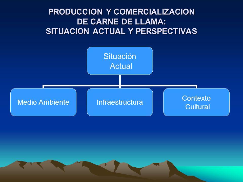 Situación Actual Medio Ambiente Infraestructura Contexto Cultural