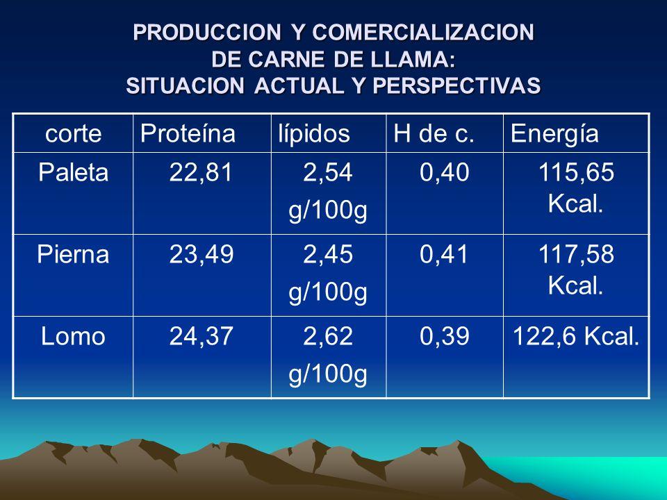 PRODUCCION Y COMERCIALIZACION DE CARNE DE LLAMA: SITUACION ACTUAL Y PERSPECTIVAS corteProteínalípidosH de c.Energía Paleta22,812,54 g/100g 0,40115,65