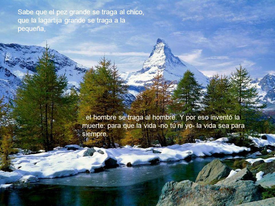 - Jaime Sabines 1926 - 1999 A mi me gusta, a mi me encanta Dios. Que Dios bendiga a Dios.