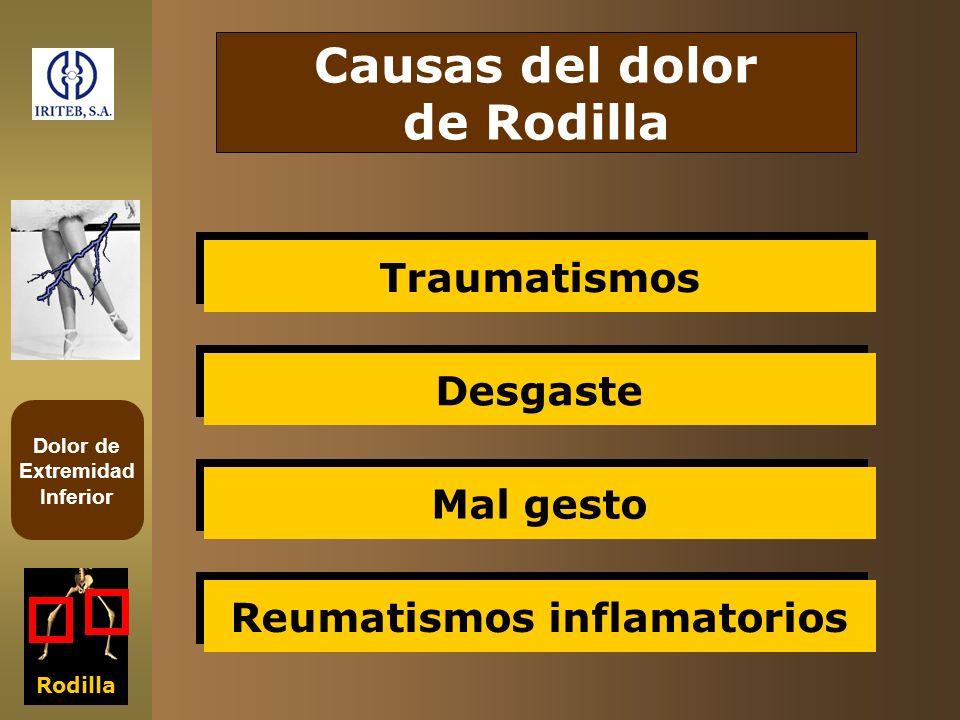 Dolor de Extremidad Inferior Rodilla Causas del dolor de Rodilla Traumatismos Desgaste Mal gesto Reumatismos inflamatorios