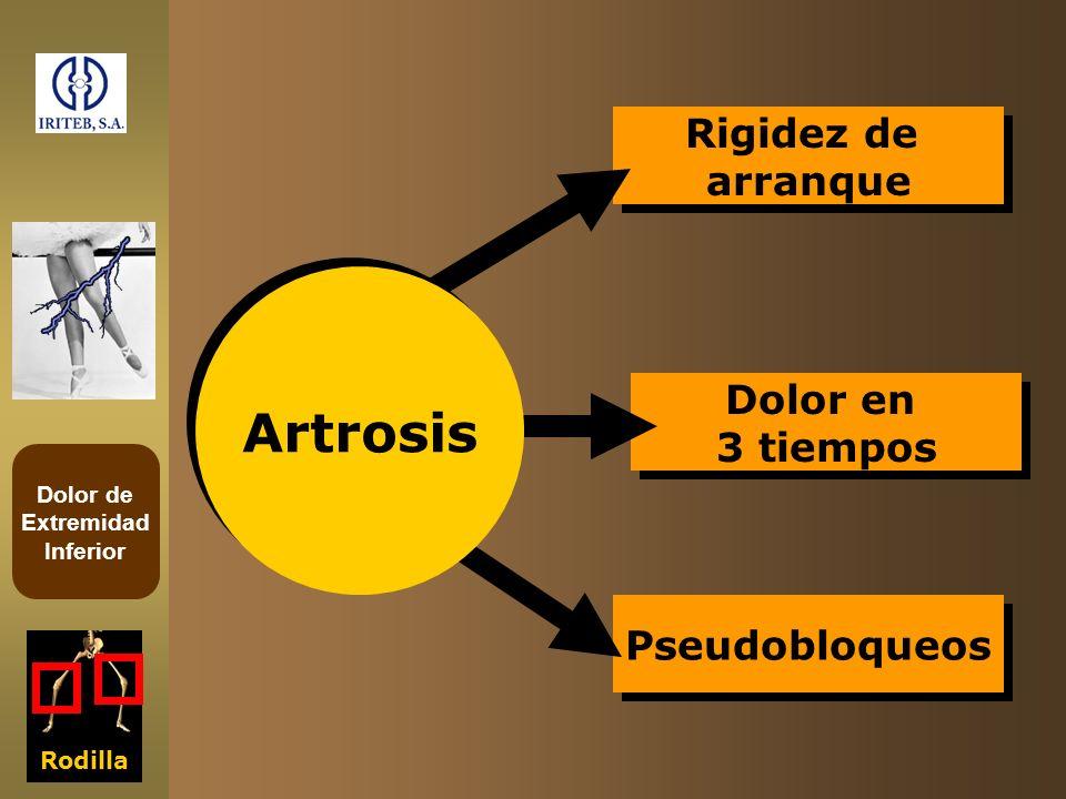Dolor de Extremidad Inferior Pseudobloqueos Dolor en 3 tiempos Dolor en 3 tiempos Rigidez de arranque Rigidez de arranque Rodilla Artrosis