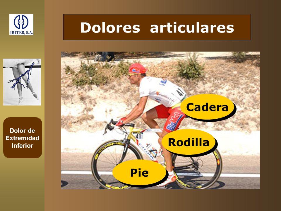 Dolor de Extremidad Inferior Dolores articulares Cadera Rodilla Pie