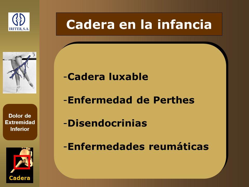 Dolor de Extremidad Inferior Cadera Cadera en la infancia -Cadera luxable -Enfermedad de Perthes -Disendocrinias -Enfermedades reumáticas -Cadera luxa
