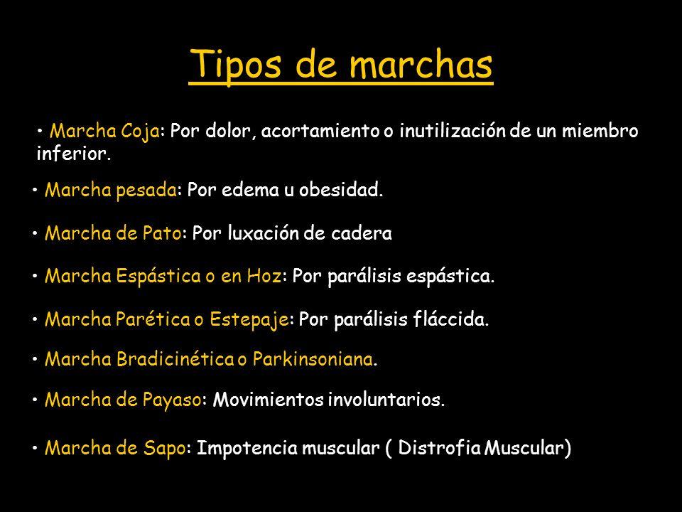 Tipos de marchas Marcha Coja: Por dolor, acortamiento o inutilización de un miembro inferior. Marcha Espástica o en Hoz: Por parálisis espástica. Marc