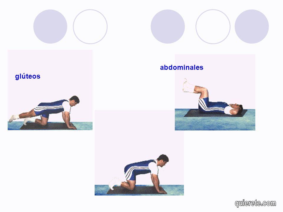 abdominales glúteos