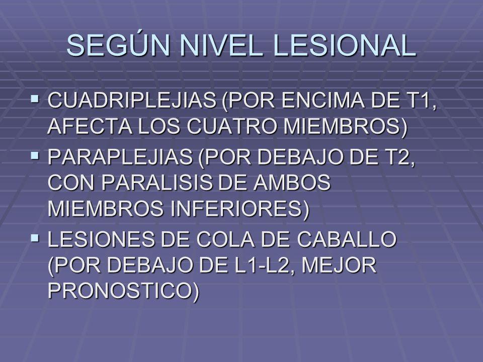 SEGÚN NIVEL LESIONAL CUADRIPLEJIAS (POR ENCIMA DE T1, AFECTA LOS CUATRO MIEMBROS) CUADRIPLEJIAS (POR ENCIMA DE T1, AFECTA LOS CUATRO MIEMBROS) PARAPLEJIAS (POR DEBAJO DE T2, CON PARALISIS DE AMBOS MIEMBROS INFERIORES) PARAPLEJIAS (POR DEBAJO DE T2, CON PARALISIS DE AMBOS MIEMBROS INFERIORES) LESIONES DE COLA DE CABALLO (POR DEBAJO DE L1-L2, MEJOR PRONOSTICO) LESIONES DE COLA DE CABALLO (POR DEBAJO DE L1-L2, MEJOR PRONOSTICO)