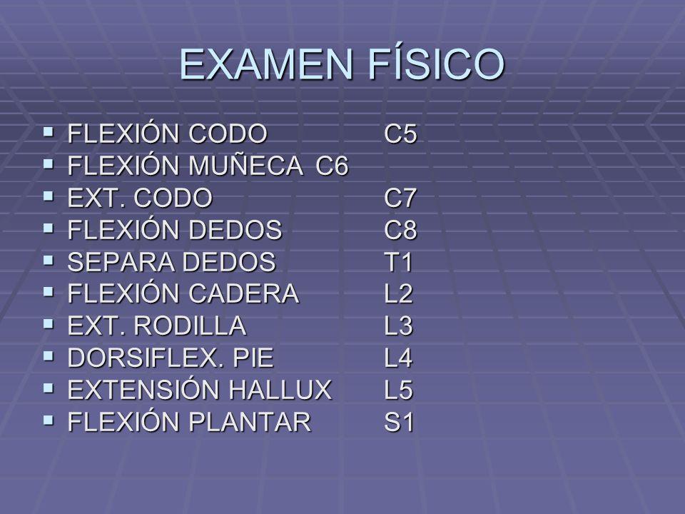 EXAMEN FÍSICO FLEXIÓN CODOC5 FLEXIÓN CODOC5 FLEXIÓN MUÑECAC6 FLEXIÓN MUÑECAC6 EXT.