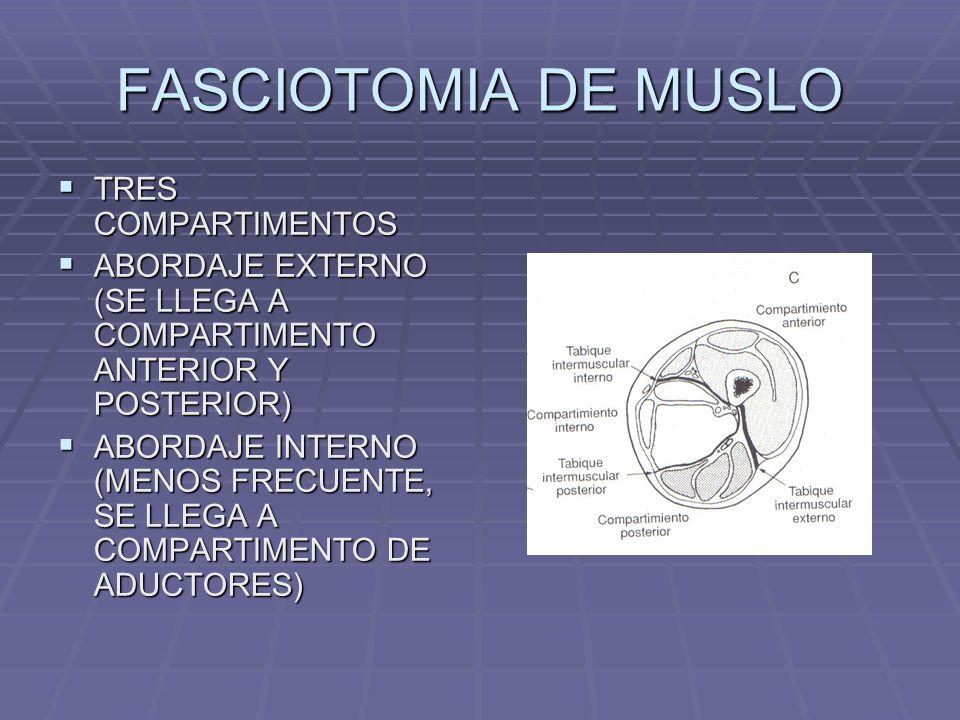FASCIOTOMIA DE MUSLO TRES COMPARTIMENTOS TRES COMPARTIMENTOS ABORDAJE EXTERNO (SE LLEGA A COMPARTIMENTO ANTERIOR Y POSTERIOR) ABORDAJE EXTERNO (SE LLEGA A COMPARTIMENTO ANTERIOR Y POSTERIOR) ABORDAJE INTERNO (MENOS FRECUENTE, SE LLEGA A COMPARTIMENTO DE ADUCTORES) ABORDAJE INTERNO (MENOS FRECUENTE, SE LLEGA A COMPARTIMENTO DE ADUCTORES)