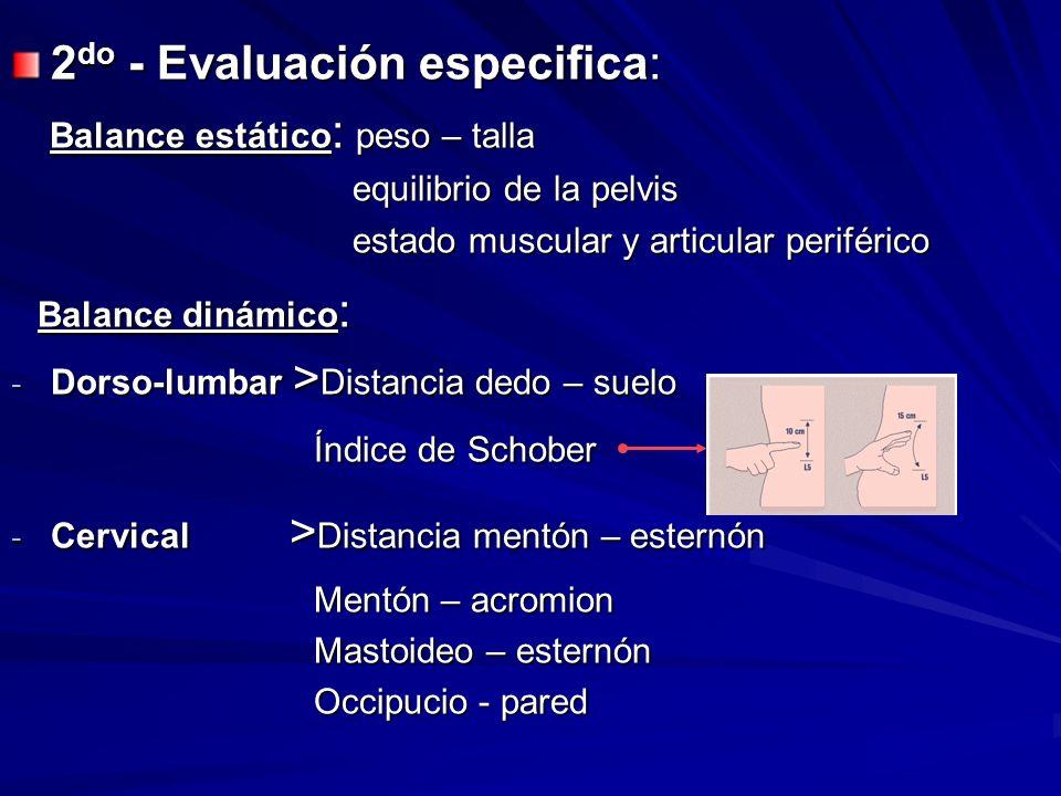 2 do - Evaluación especifica: Balance estático : peso – talla Balance estático : peso – talla equilibrio de la pelvis equilibrio de la pelvis estado m