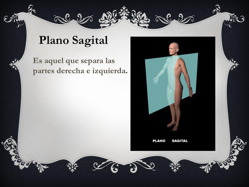 Plano Sagital Es aquel que separa las partes derecha e izquierda.