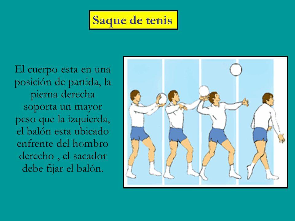 Saque de tenis El cuerpo esta en una posición de partida, la pierna derecha soporta un mayor peso que la izquierda, el balón esta ubicado enfrente del hombro derecho, el sacador debe fijar el balón.