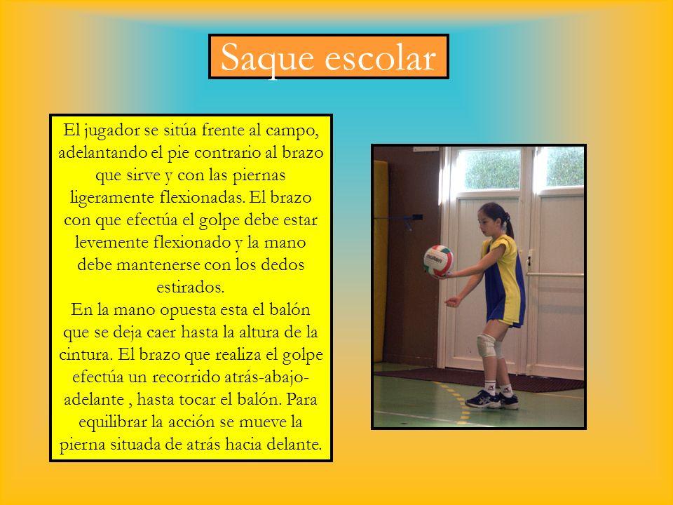 Saque escolar El jugador se sitúa frente al campo, adelantando el pie contrario al brazo que sirve y con las piernas ligeramente flexionadas. El brazo