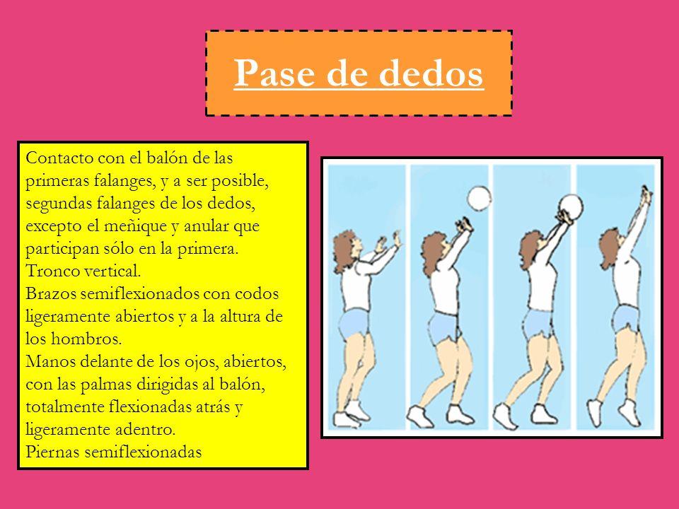 Pase de dedos Contacto con el balón de las primeras falanges, y a ser posible, segundas falanges de los dedos, excepto el meñique y anular que participan sólo en la primera.
