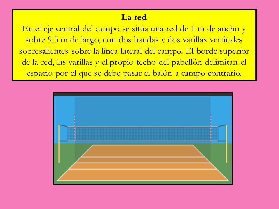 La red En el eje central del campo se sitúa una red de 1 m de ancho y sobre 9,5 m de largo, con dos bandas y dos varillas verticales sobresalientes so