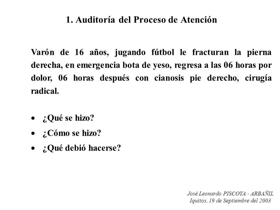 José Leonardo PISCOYA - ARBAÑIL Iquitos, 19 de Septiembre del 2003 1. Auditoría del Proceso de Atención ¿Qué se hizo? ¿Cómo se hizo? ¿Qué debió hacers