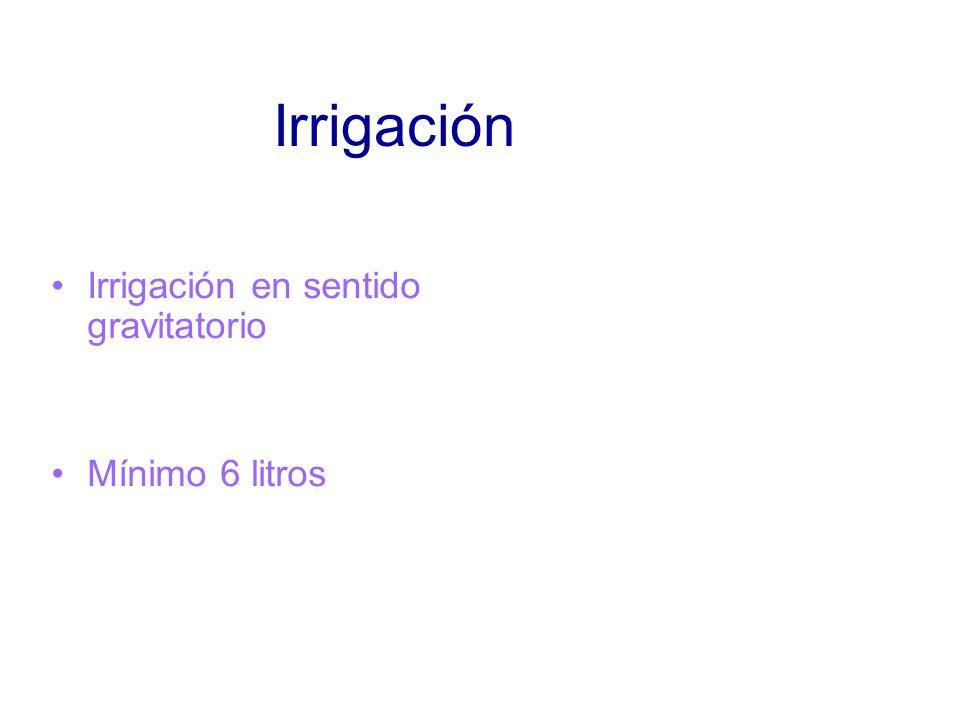 Irrigación Irrigación en sentido gravitatorio Mínimo 6 litros