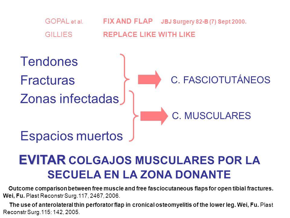 Tendones Fracturas Zonas infectadas Espacios muertos C.
