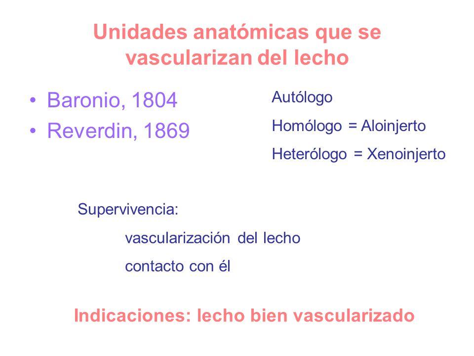 Unidades anatómicas que se vascularizan del lecho Baronio, 1804 Reverdin, 1869 Autólogo Homólogo = Aloinjerto Heterólogo = Xenoinjerto Supervivencia: vascularización del lecho contacto con él Indicaciones: lecho bien vascularizado