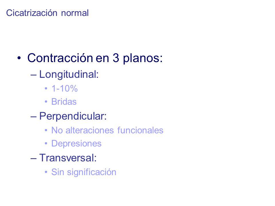 Contracción en 3 planos: –Longitudinal: 1-10% Bridas –Perpendicular: No alteraciones funcionales Depresiones –Transversal: Sin significación Cicatrización normal