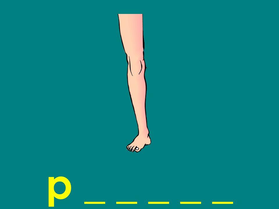 p _ _ _ _ _