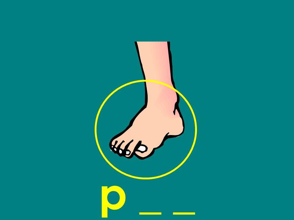 p _ _