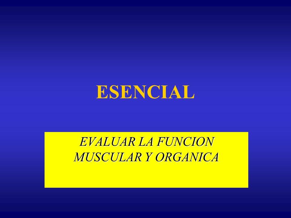 ESENCIAL EVALUAR LA FUNCION MUSCULAR Y ORGANICA