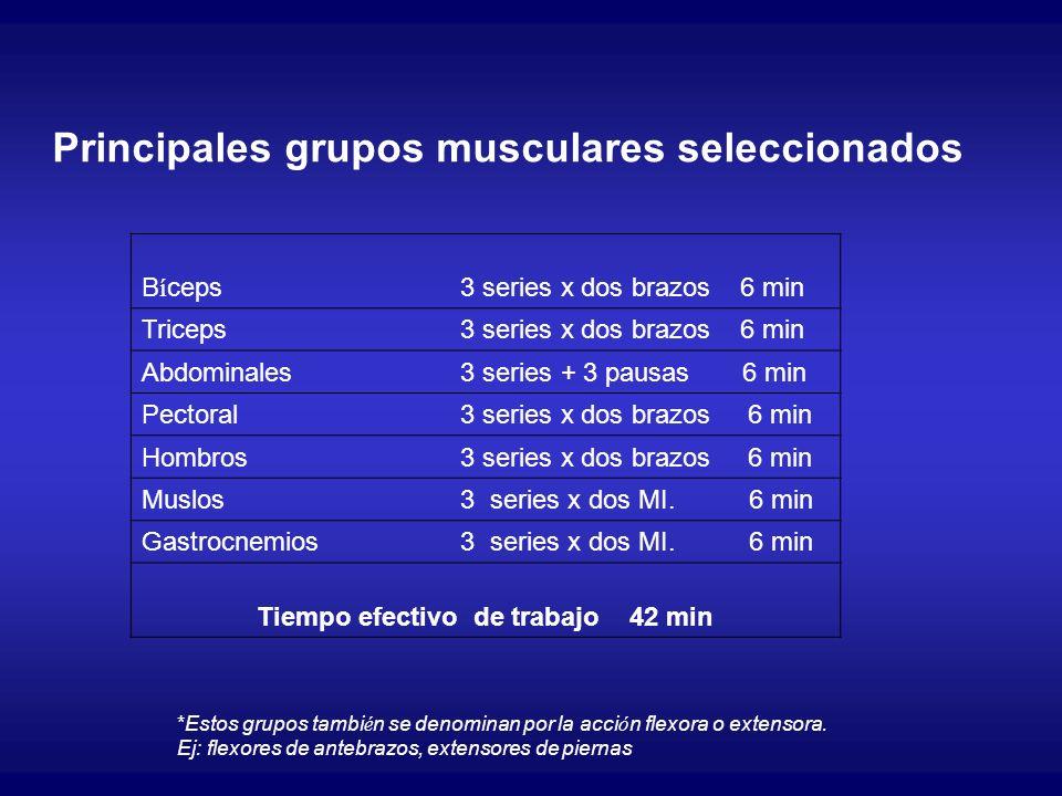Principales grupos musculares seleccionados B í ceps3 series x dos brazos 6 min Triceps3 series x dos brazos 6 min Abdominales3 series + 3 pausas 6 mi