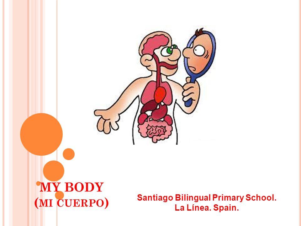MY BODY ( MI CUERPO ) Santiago Bilingual Primary School. La Línea. Spain.
