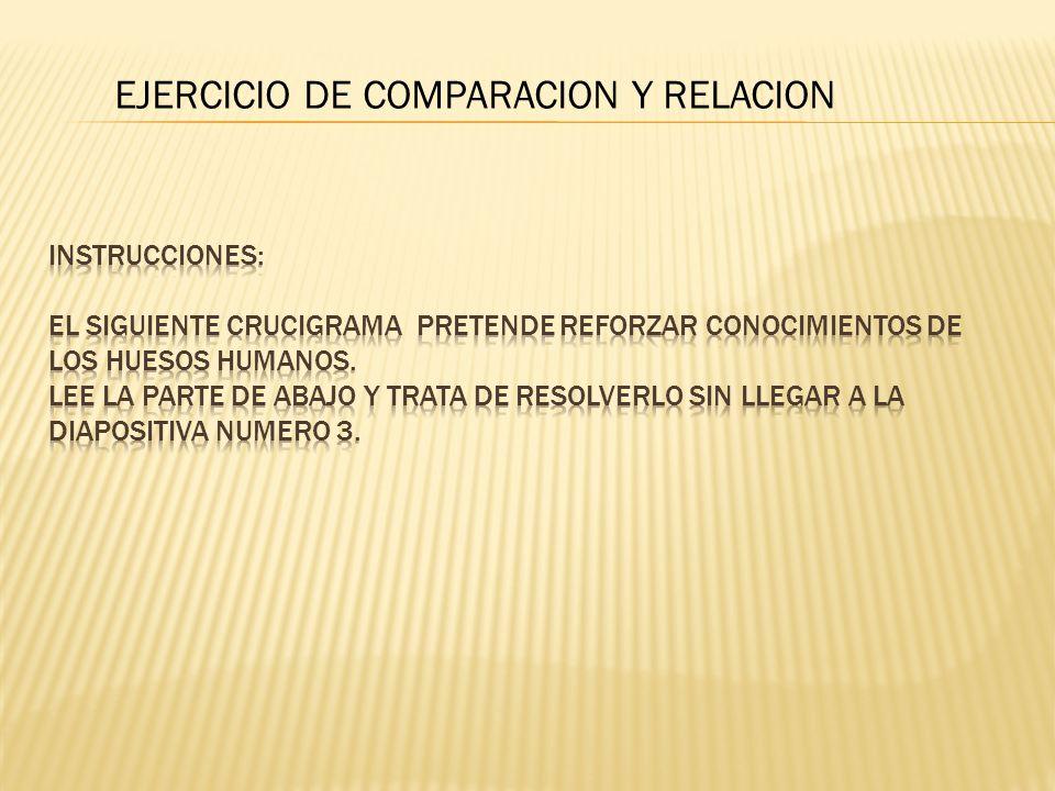 EJERCICIO DE COMPARACION Y RELACION