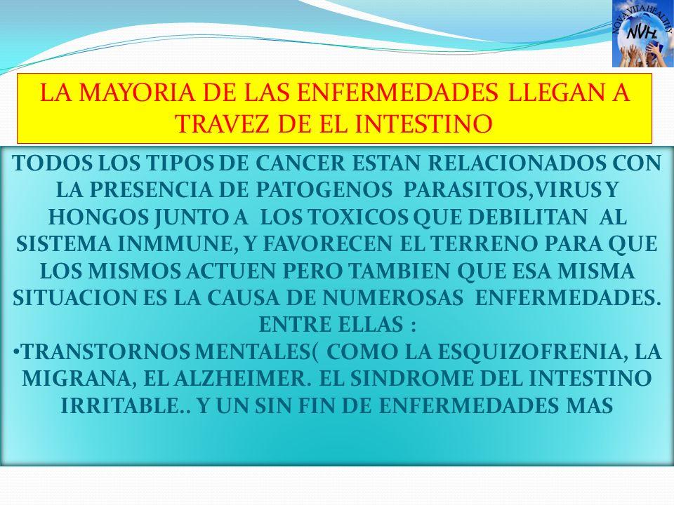 TODOS LOS TIPOS DE CANCER ESTAN RELACIONADOS CON LA PRESENCIA DE PATOGENOS PARASITOS,VIRUS Y HONGOS JUNTO A LOS TOXICOS QUE DEBILITAN AL SISTEMA INMMU