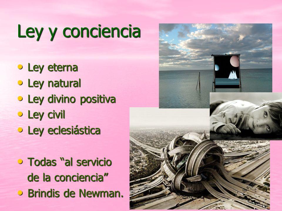 19 Ley y conciencia Ley eterna Ley eterna Ley natural Ley natural Ley divino positiva Ley divino positiva Ley civil Ley civil Ley eclesiástica Ley ecl