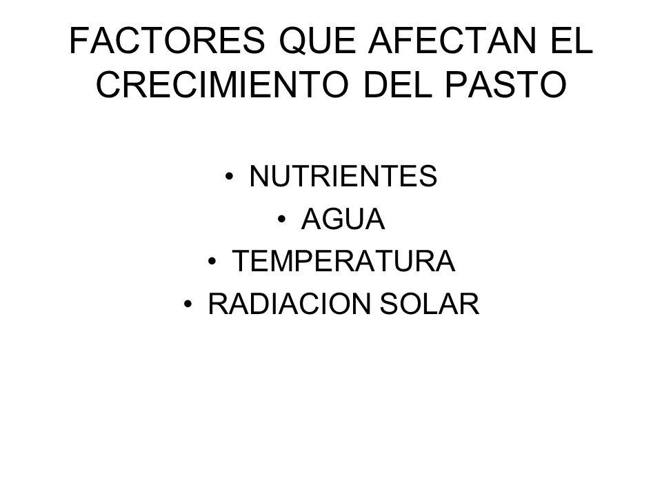 FACTORES QUE AFECTAN EL CRECIMIENTO DEL PASTO NUTRIENTES AGUA TEMPERATURA RADIACION SOLAR