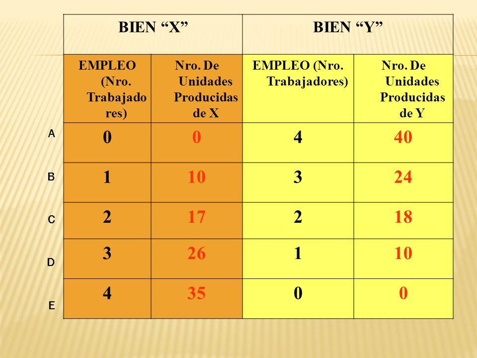 BIEN XBIEN Y EMPLEO (Nro.Trabajado res) Nro. De Unidades Producidas de X EMPLEO (Nro.