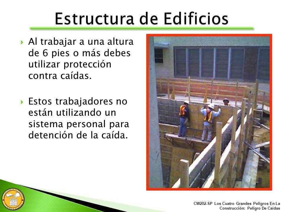 Al trabajar a una altura de 6 pies o más debes utilizar protección contra caídas: Sistema Personal para detención de la caída. Barandales/Barandillas