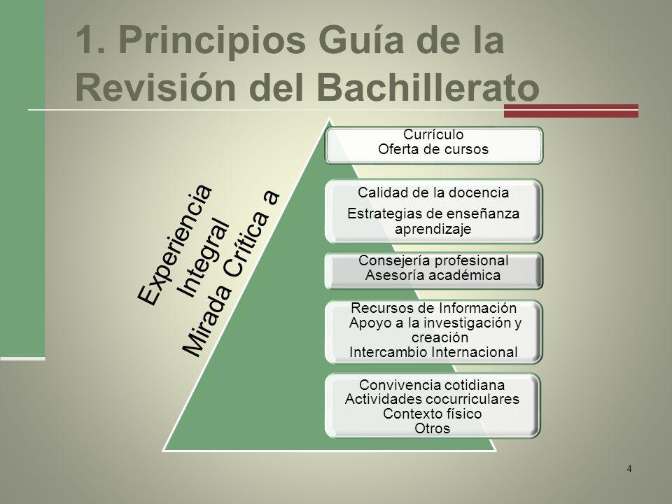 1. Principios Guía de la Revisión del Bachillerato Currículo Oferta de cursos Calidad de la docencia Estrategias de enseñanza aprendizaje Consejería p