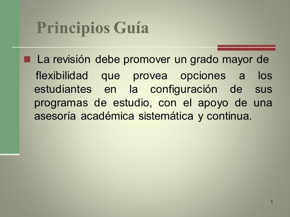 Principios Guía La revisión debe promover un grado mayor de flexibilidad que provea opciones a los estudiantes en la configuración de sus programas de