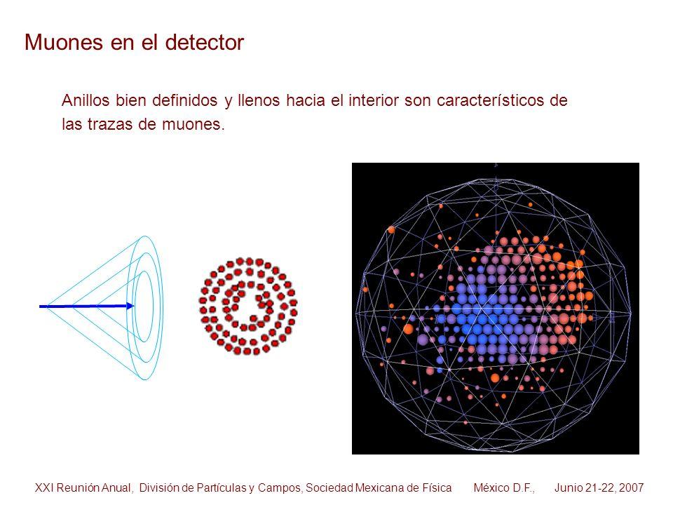 Muones en el detector Anillos bien definidos y llenos hacia el interior son característicos de las trazas de muones. XXI Reunión Anual, División de Pa