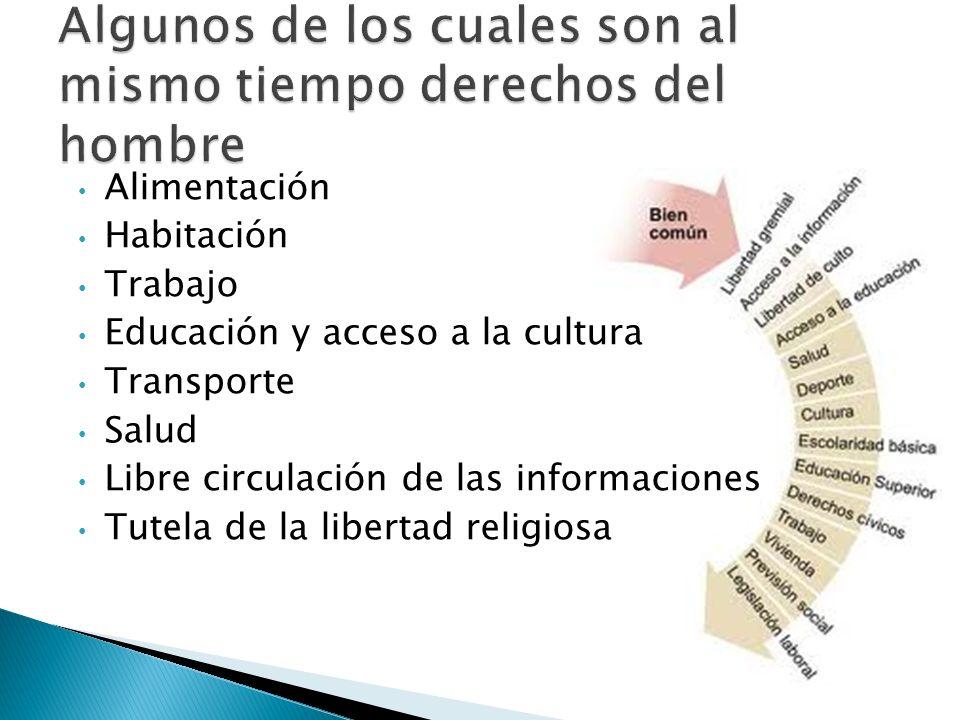 Alimentación Habitación Trabajo Educación y acceso a la cultura Transporte Salud Libre circulación de las informaciones Tutela de la libertad religios