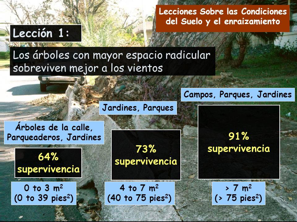 64% supervivencia 0 to 3 m 2 (0 to 39 pies 2 ) Árboles de la calle, Parqueaderos, Jardines 73% supervivencia 91% supervivencia Jardines, Parques 4 to