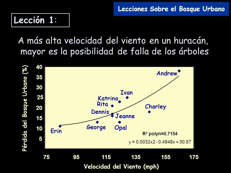 A más alta velocidad del viento en un huracán, mayor es la posibilidad de falla de los árboles 0 5 10 15 20 25 30 35 40 7595115135155175 Velocidad del