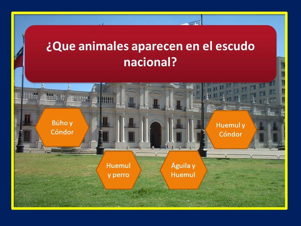 ¿Que animales aparecen en el escudo nacional? Búho y Cóndor Huemul y perro Águila y Huemul Huemul y Cóndor