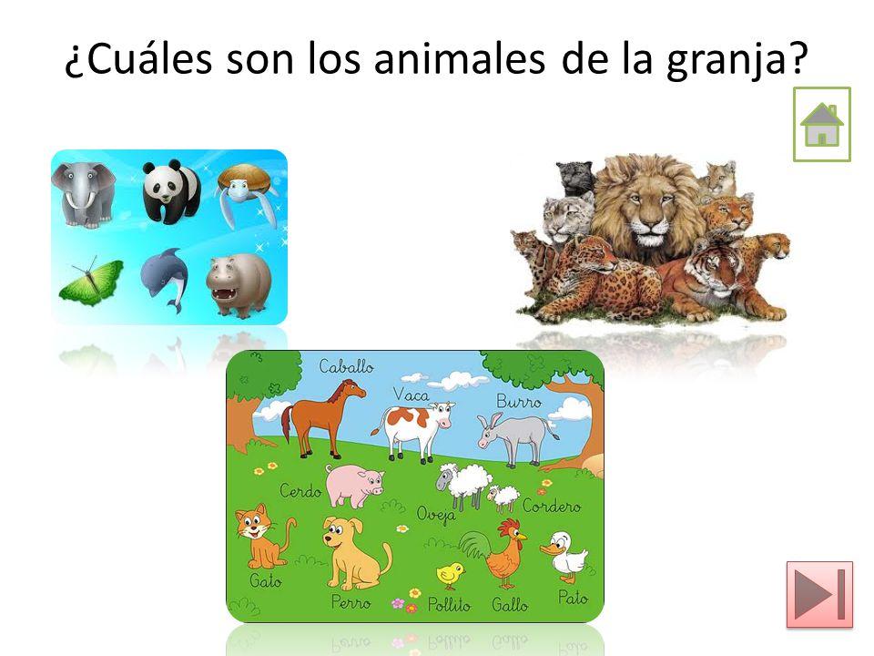 ¿Cuáles son los animales de la granja? ¿Cuál es el hábitat de los animales de la granja? ¿Cuál es el hábitat de los animales de la granja? ¿Cómo es la