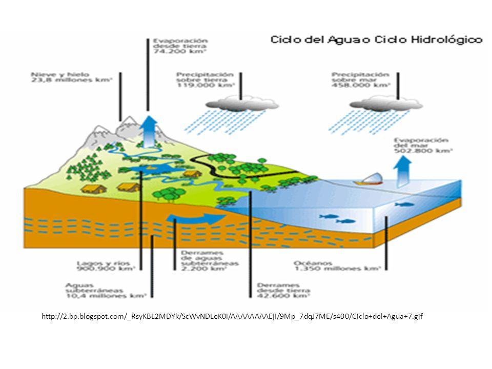 http://2.bp.blogspot.com/_RsyKBL2MDYk/ScWvNDLeK0I/AAAAAAAAEjI/9Mp_7dqJ7ME/s400/Ciclo+del+Agua+7.gif