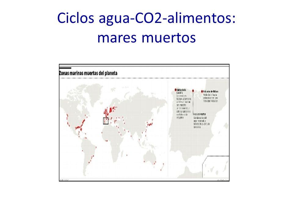 Ciclos agua-CO2-alimentos: mares muertos