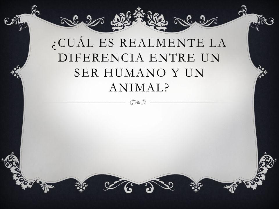 ¿CUÁL ES REALMENTE LA DIFERENCIA ENTRE UN SER HUMANO Y UN ANIMAL?