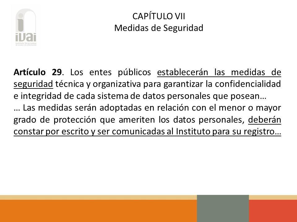 CAPÍTULO VII Medidas de Seguridad Artículo 29.