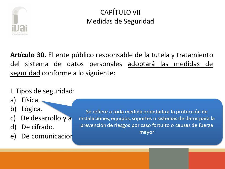 CAPÍTULO VII Medidas de Seguridad Artículo 30.
