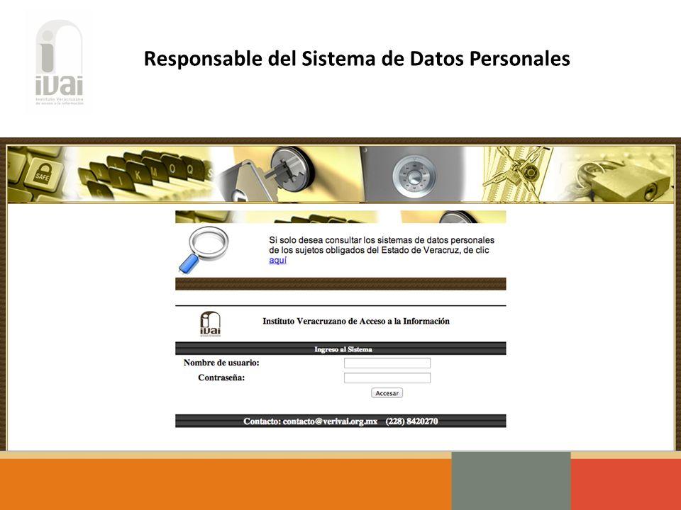 Responsable del Sistema de Datos Personales
