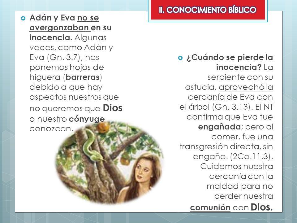 Adán y Eva no se avergonzaban en su inocencia. Algunas veces, como Adán y Eva (Gn. 3.7), nos ponemos hojas de higuera ( barreras ) debido a que hay as