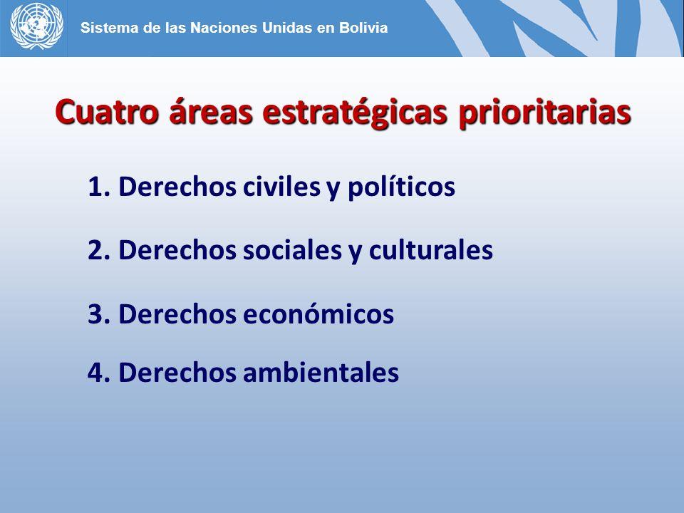 Cuatro áreas estratégicas prioritarias 1.Derechos civiles y políticos 2.